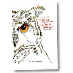 The Order of Things by Reid Psaltis